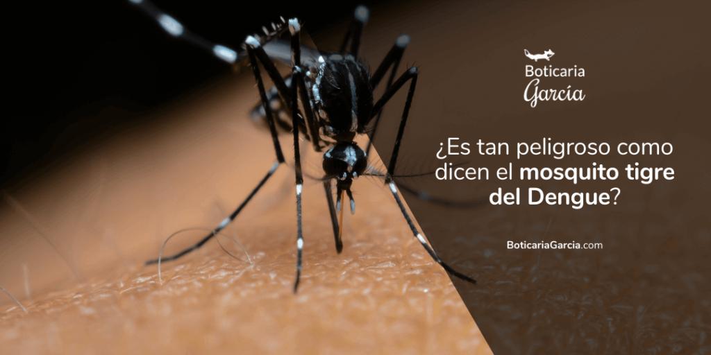 Mosquito tigre del Dengue