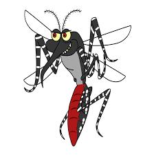 Repelentes de mosquitos: ¿cuáles son más eficaces?