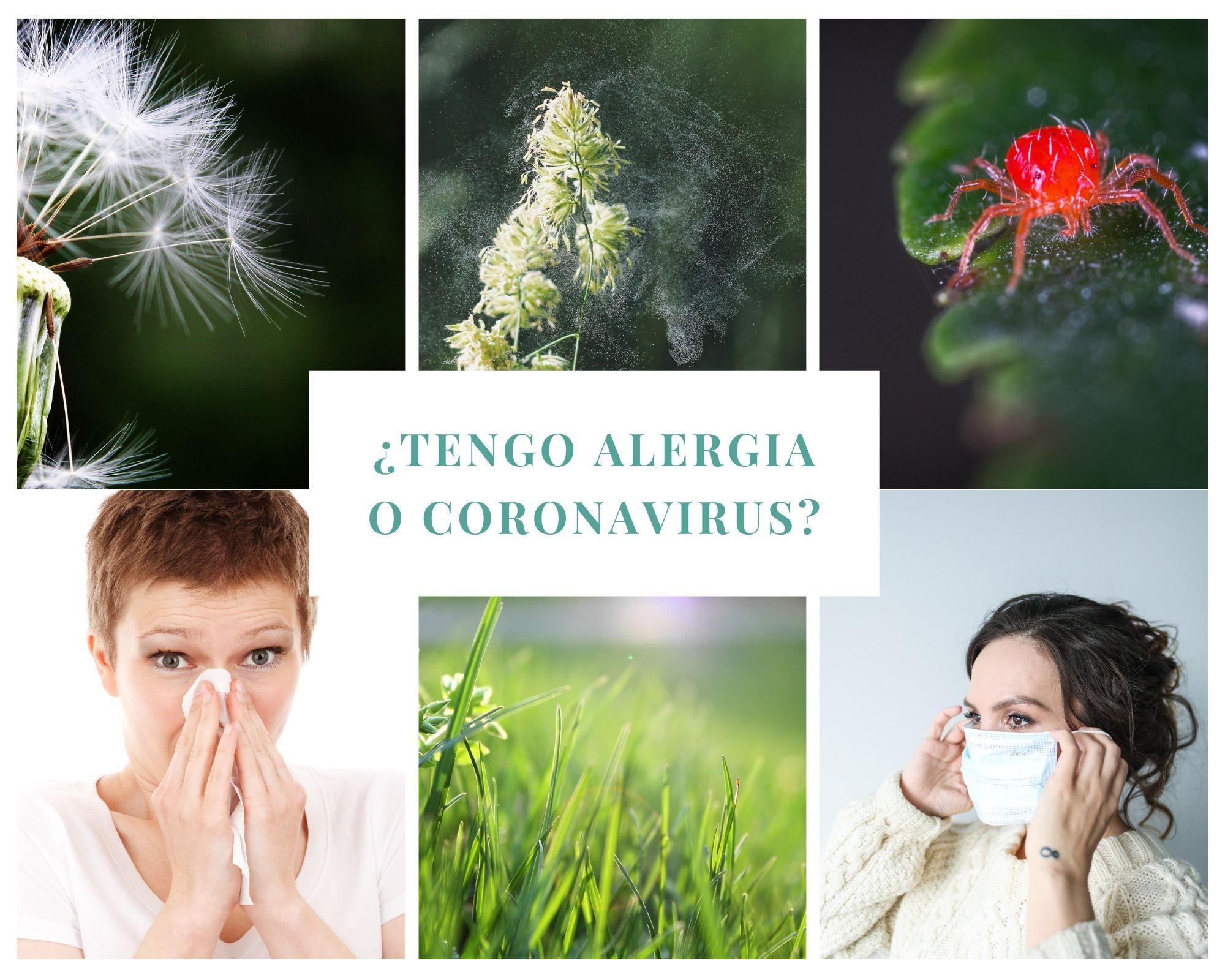 ¿Tengo alergia o coronavirus?