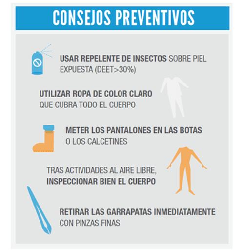 Consejos preventivos para las picaduras de garrapata